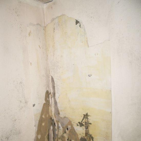 behang verwijderen - tarief
