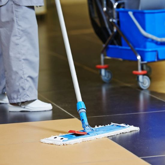 professional cleaner - rate